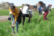 From Brownfield to Greenspace: Sustainable Urban Land Use
