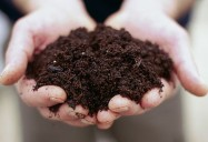 The Secrets of Soil