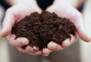 The Secrets of Soil
