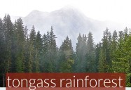 Landscape of Change: The Tongass National Forest