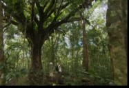Eco-Creatures - Ep. 213: Planet Echo (Season 2)