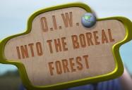 Dans la forêt boréale: Partageons notre habitat