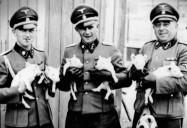 Nazi Creatures