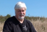 Sea Shepherd: Paul Watson - The Green Interview Series