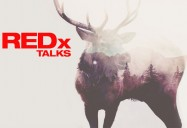 REDx Talks Series - Art is the Medicine