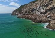 West Coast - Heading for Bird Island (Ep. 4): Siyaya: Wildest Cape Series