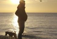 Seahorse: The Dad who Gave Birth