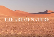 The Art of Nature Series