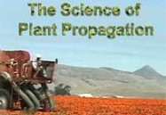 The Science of Propagation Series