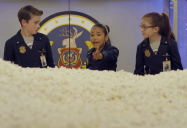 High Maintenance (Episode 14A): Odd Squad Series Two