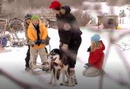 Canada - Dog-Sledding (Episode 12): Are We There Yet? World Adventure (Season 1)