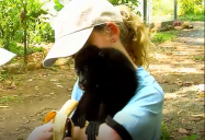 Costa Rica - Animal Rescue (Episode 28): Are We There Yet? (Season 1)