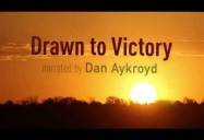 Drawn to Victory: A Nation Soars Series