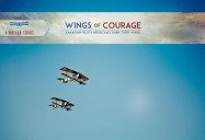 Wings of Courage: A Nation Soars Series