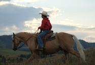Les Métis de l'Alberta: ré:INSTALLATION - Voici comment les collectivités déracinées luttent pour survivre