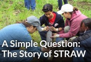 A Simple Question: The Story of STRAW