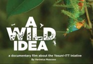 A Wild Idea (English Version)