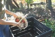 Composting For Busy People