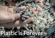 Plastic is Forever: Kids Can Save the Planet Series