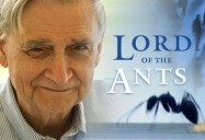 Naturalist E. O. Wilson - Lord of the Ants