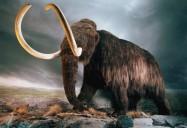 Last Extinction: NOVA