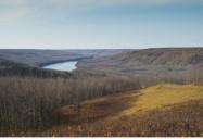 Dawson Creek: DocJam Series